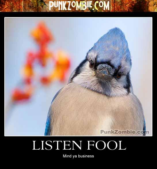 Listen Fool Demotovational Poster