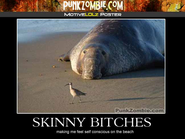 Skinny Bitches Demotovational Poster